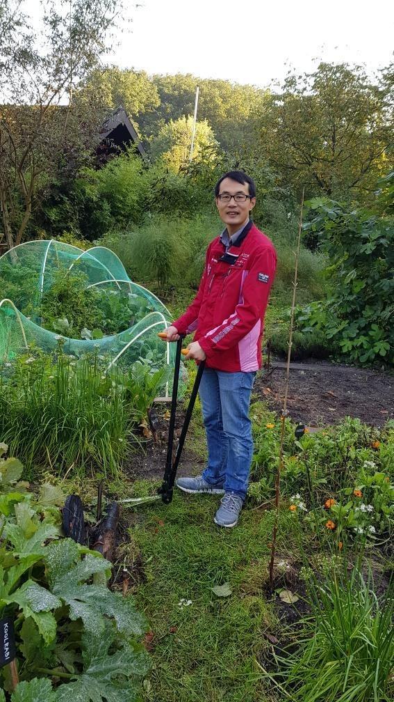 Volunteer doing gardening work